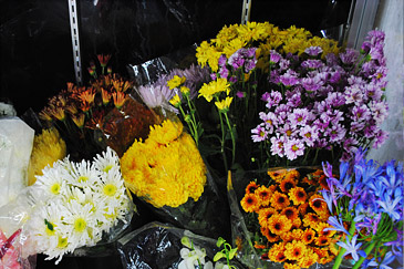 Fresh Supply of Local and Imported Flowers